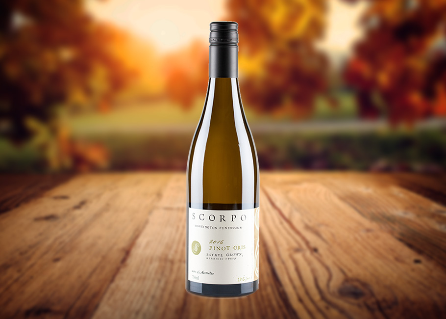 The Wine Front review – Scorpo Pinot Gris 2016 – Scorpo
